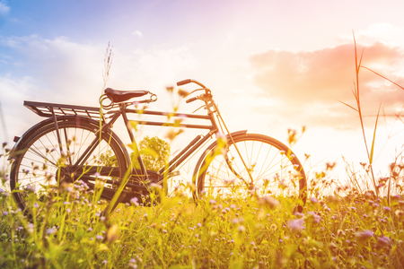beautiful landscape image with Bicycle at sunset Imagens