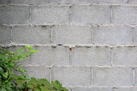 stucco: Closeup fragment of stucco wall of a building