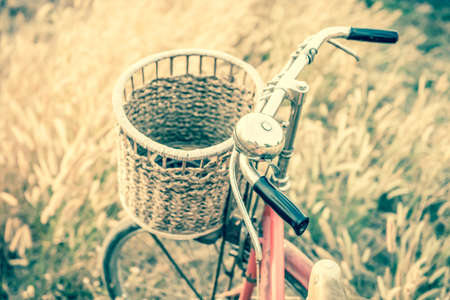grassfield: Vintage Bicycle with Summer grassfield in vintage tone style