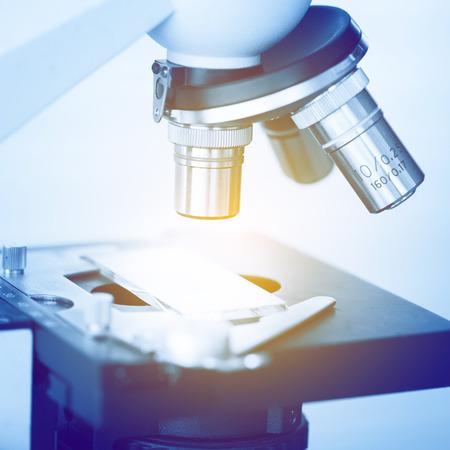 microscópio Imagens
