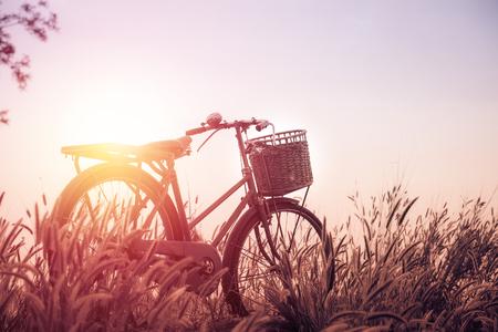 imagem da paisagem bonita com a bicicleta ao pôr do sol; estilo tom filtrada do vintage