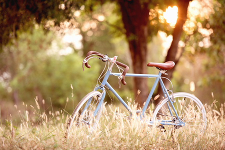 beautiful image with sport vintage Bicycle at sunset