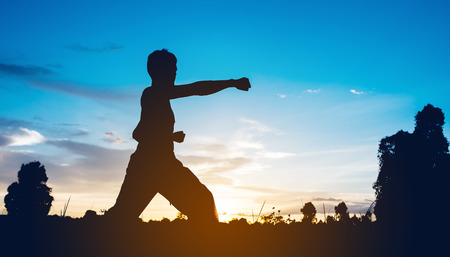 karaté do treinamento do homem no por do sol.