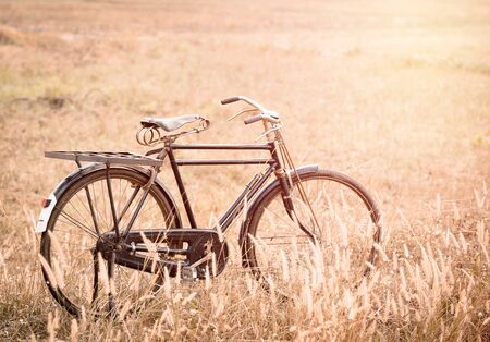 grassfield: beautiful landscape image with vintage Bicycle on Summer grassfield Stock Photo