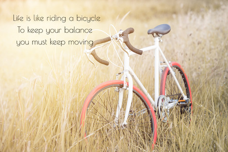 albert: life quote. Inspirational quote by Albert Einstein on image Sport Vintage Bicycle with Summer grass field ; vintage filter style Stock Photo