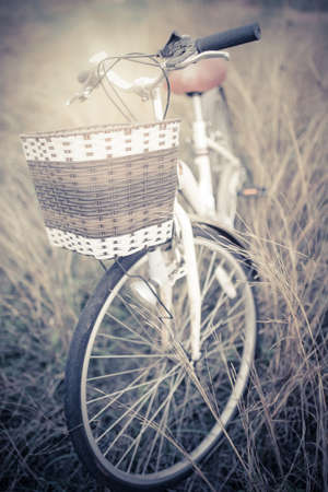 grassfield: Vintage Bicycle with Summer grassfield ; vintage filter style