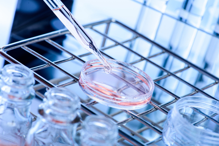 test glass: Laboratory research, dropping liquid to test tube