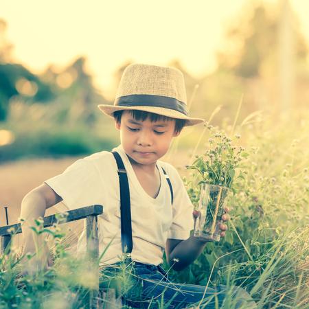 enjoyment: portrait kids keeping flowergrass in a farm,Boy in meadow. travel and sunset in vintage style.