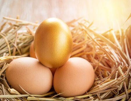 gold egg: Gold egg in a nest