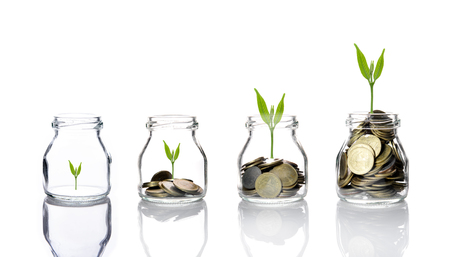 Mélanger les pièces avec des semences en bouteille transparente sur fond blanc, le concept de croissance de l'investissement des entreprises, concept d'économie Banque d'images - 50208379