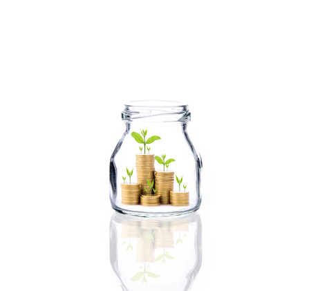 Investment growth concept,Golden coins and seed in clear bottle over white background