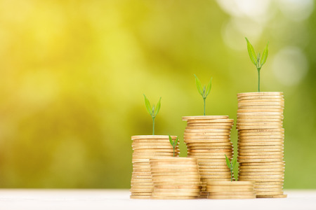 coin stack: Business Finance and Money concept, Money Gold coin stack growing graph with green bokeh background,Trees growing on gold coin