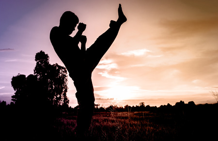 karate fighter: man training karate or boxing on grass field at sunset. Stock Photo