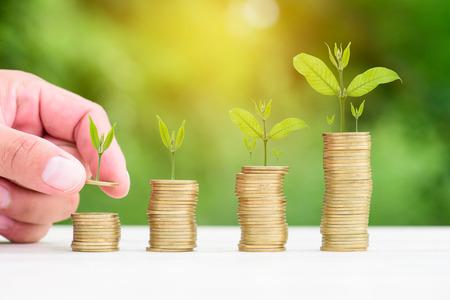 Geld Goldmünze Treppe mit grünen Hintergrund Bokeh, Business Finance und Geld-Konzept, Bäume wachsen auf Goldmünze Standard-Bild