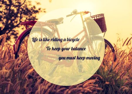 albert: life quote. Inspirational quote by Albert Einstein on beautiful landscape image with Bicycle  at sunset