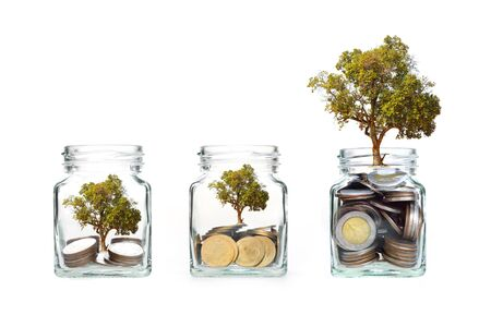 clear bottle: coins with tree in clear bottle on white background,Business investment growth concept,saving concept Stock Photo