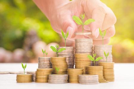 Nahaufnahme der männlichen Hand Goldmünzen mit grünen Hintergrund Bokeh Stapeln, Business Finance und Geld-Konzept, Geld sparen für in den future.Trees wächst auf Münze vorbereiten