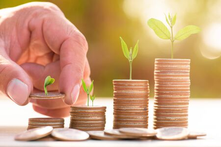 holiday profits: Close up of male hand stacking gold coins with green bokeh background ,Business Finance and Money concept,Save money for prepare in the future.Trees growing on coin
