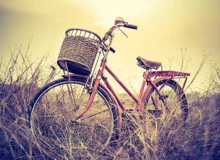 beautiful landscape image with Bicycle at sunset on summer grass field Stock Photo
