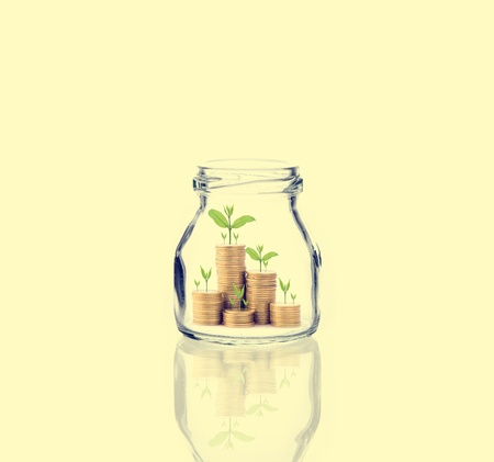 clear bottle: Investment growth concept,Golden coins and seed in clear bottle. Stock Photo