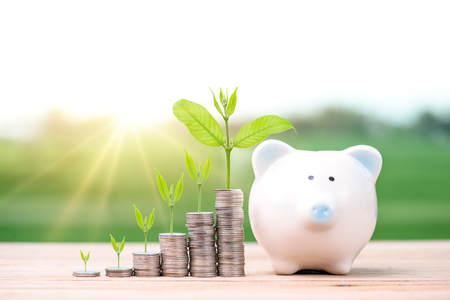 Business Finance and Money concept, Money coin stack growing graph with piggy bank saving concept.