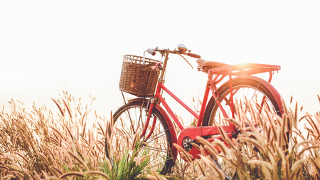 beautiful landscape image with Bicycle at sunset Stock Photo