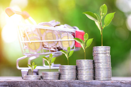 business Finance and Money concept, Money coins stack growing graph and tree growing on coins with bokeh background,save and investment concept. Stock Photo