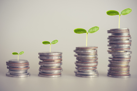 close up of rows coins tree growing on coins. for investment finance and banking Growing concept