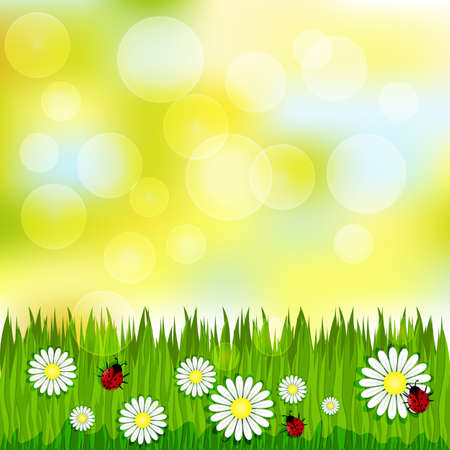 Spring blurred pattern with grass and chamomile ladybugs Vector