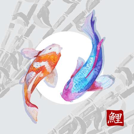 carpa: Acuarela japonesa carpas koi nadando. Simbol caligr�fico.