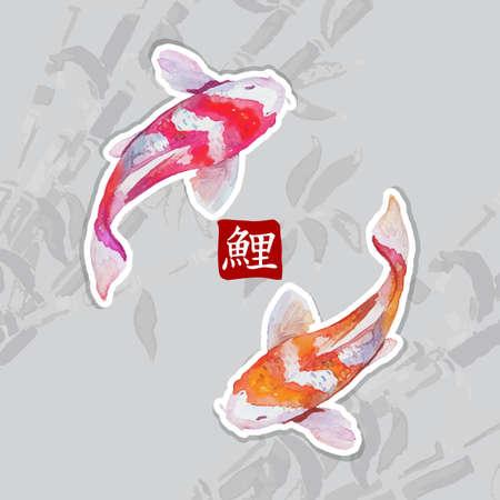Japanese watercolor carps koi swimming. Calligraphic simbol. Reklamní fotografie - 36895116