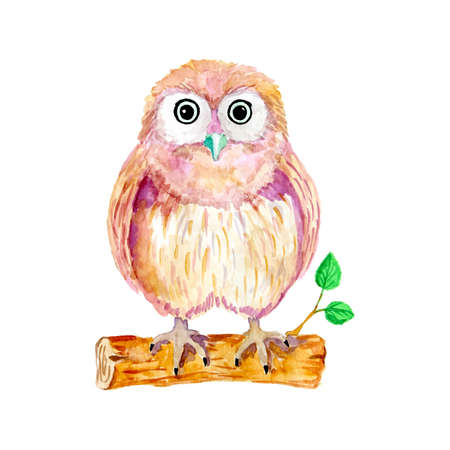 night owl: Watercolor cartoon owl sitting on the branch