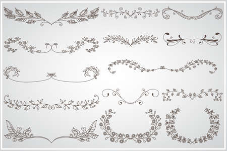 Big set of elegant calligraphic foliate borders