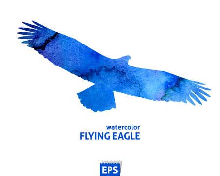 수채화 푸른 독수리 비행