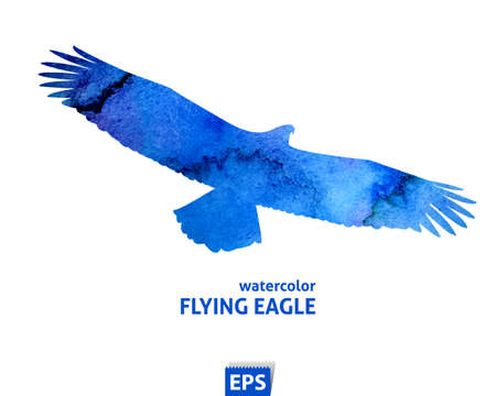 wings logos: Watercolor flying blue eagle Illustration