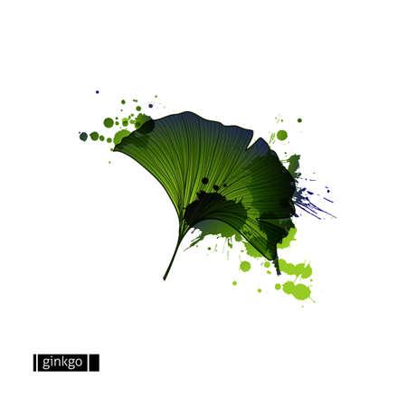 Groen blad van ginkgo met vlekken. Stock Illustratie