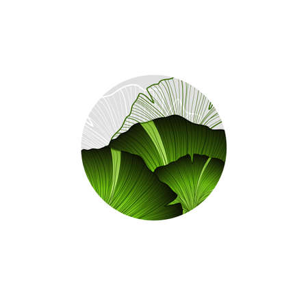 ginkgo leaf: Abstract round with part of ginkgo leaf. Can be used as design element or part of decoration