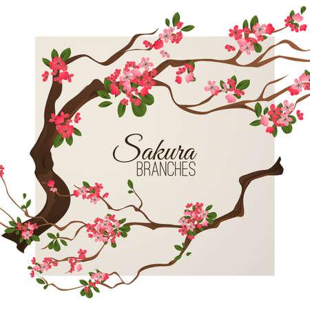 현실적인 사쿠라 일본 벚꽃 지점 피는 꽃 벡터 일러스트와 함께