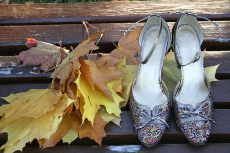 Leaves and the pair of girls shoes on a bench   photo