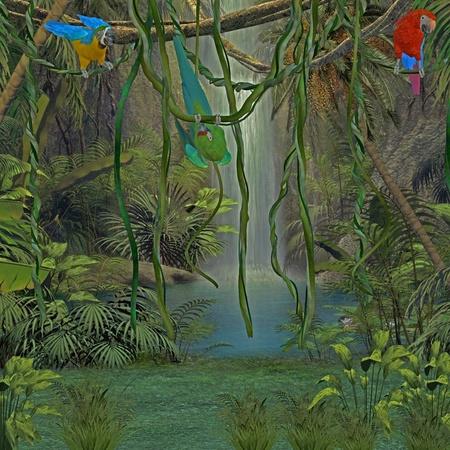 tropical shrub: jungle