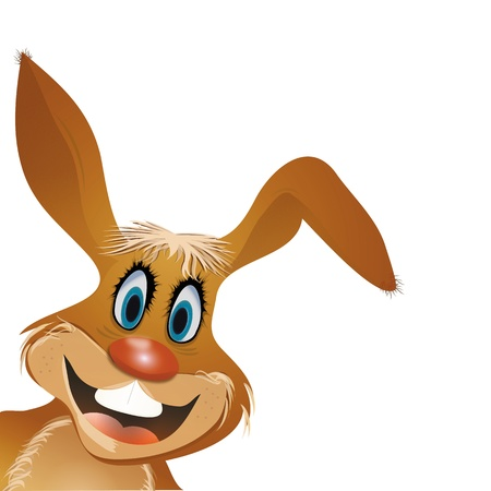 red nose: funny bunny with red nose  Illustration