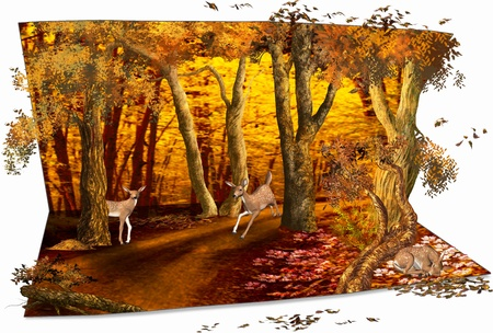 rainforest animals: autumn card