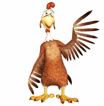 animal cock: Gallo Archivio Fotografico