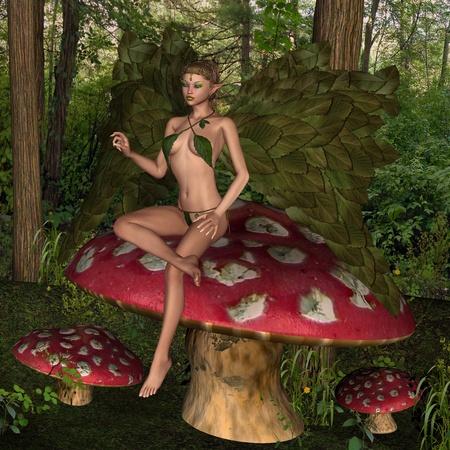 forrest: Feetjie in het hout Stockfoto