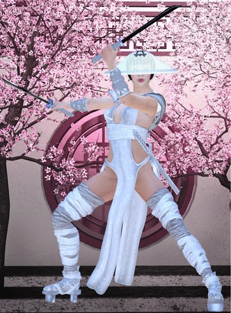 samurai girl photo