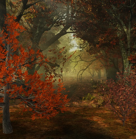 gift accident: autumn forest