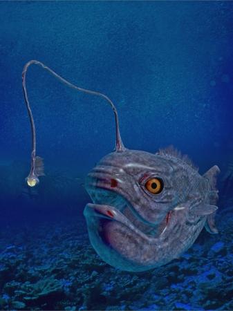 lantern: lantern fish Stock Photo