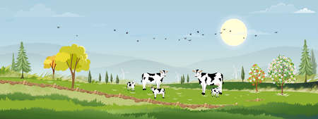 Rural farm lansdscape with green fields and barn animals cows, windmills on hill with blue sky and clouds, Vector cartoon Spring or Summer landscape, Eco village or Organic farming in uk