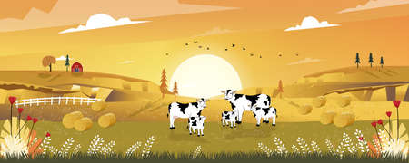Cartoon landscape of Mid Autumn with sunrise view on harvested field with farmhouse, wood barn,cows and straw bales in the countryside,Panorama view of farmlands in fall season with orange foliage.