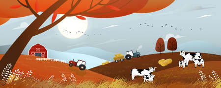 Vector Autumn landscape with sunrise view on harvest field with tractor,wood barn,cows and straw bales in the countryside,Panorama view farmlands in fall season with orange foliage, Mid autumn festval
